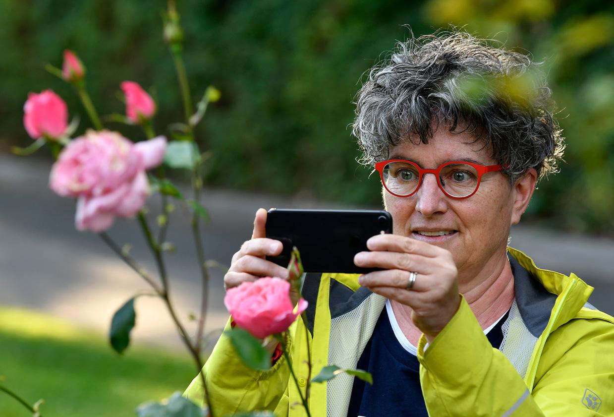 Frau fotografiert oder filmt Blume mit Smartphone